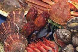 讓人胃口大開的的海鮮沙茶麵,鮮嫩爽口不油膩,美味好吃又下飯
