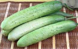 冬天菜太貴,這8樣蔬菜,現在趁便宜多囤些儲存起來,冬天吃更香