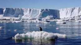 2021地球到底怎麼了?230家期刊聯合警告:人類正面臨不可逆災難